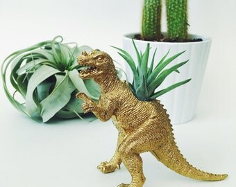 Small Gold Ceratosaurus Dinosaur Planter with Air Plant; Dinosaur Planter; Air Plant; Planter; Desk Accessory; Dinosaur; Home Decor