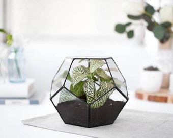 Terrarium Geometric glass - Terrarium container - Geometric planter - dodecahedron - Indoor planters - Modern terrarium Modern planter (S10)