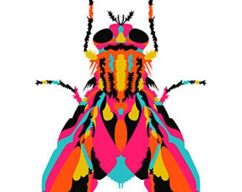 House Fly. Cross Stitch pattern, Digital Download PDF. Fly on the wall. Geometric house fly with colorful patches. Bright & Modern