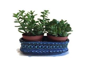 Mid Century Planter Cobalt Blue Bitossi Style Retro Danish Style Oblong Pottery Succulent Planter Rimini Blue Embossed Ornate Bohemian