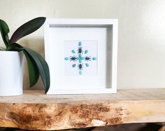 Real insect mandala wall art with beetles and turquoise