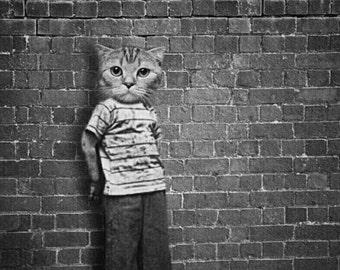 Cat Print, Cat Art, Cat Lovers Gift, Weird Art, Black & White Print, Photo Prints, Wall Art, Quirky Art, Unusual Art, Anthropomorphic Art