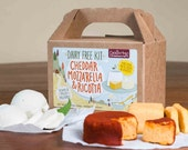 DAIRY FREE Cheddar, Mozzarella & Ricotta DIY Kit - Vegan, Paleo, Allergy Friendly - Custom Cheese in About 30 Minutes, 10 Batches Per Kit