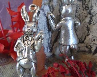 Alice in Wonderland white rabbit pendant