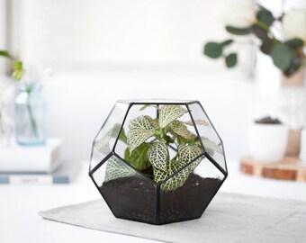 Terrarium Geometric glass, Terrarium container, Geometric planter, dodecahedron, Indoor planters, Modern terrarium  (S10)