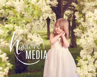 Beautiful Outdoor Nature Digital Backdrop Scene - White Flowers - Digital Photography Background for Children, Family or Couples