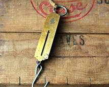 Vintage Hanging Spring Fish Pocket Balance