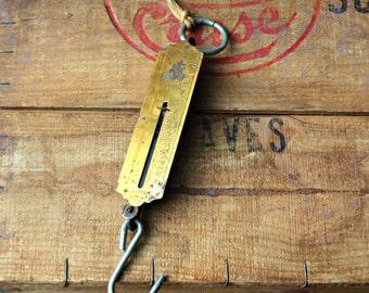 SALE-Vintage Hanging Spring Fish Pocket Balance