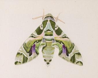 Moth Embroidery Giclée Fine Art Print