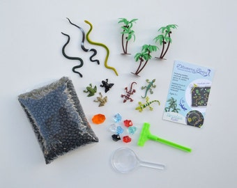 Discovery Kit for Sensory Play (No Box): Rainforest Exploration