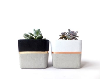 Square Concrete Small Planter for Succulent Grey White Black Industrial Home Decor