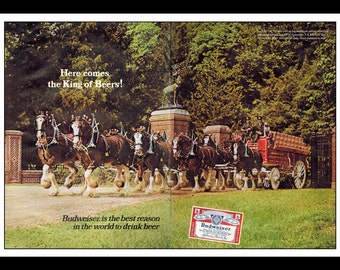 "Vintage Print Ad January 1968 : Bud Budweiser Beer Horses Wall Art Decor 16"" x 11"" Advertisement"