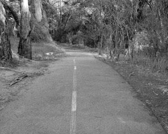Unkept - Black and white framed photography