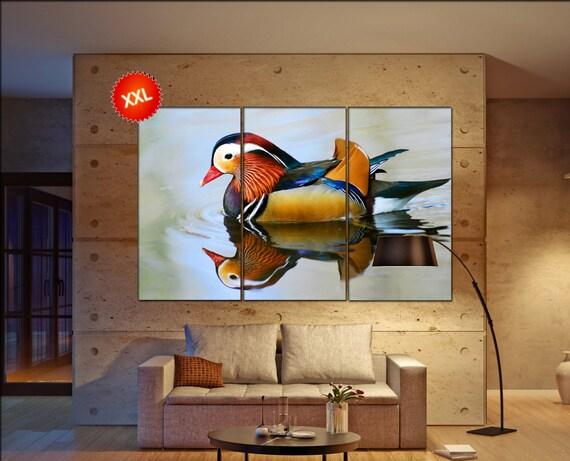 mandarin duck  print  on Closeup male mandarin duck photo art work framed art artwork