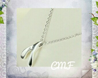 Wishbobe Necklace 925 Sterling Silver Necklace Wishbone Pendant