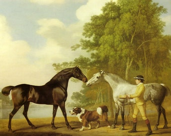 1984 horse and dog print by george stubbs