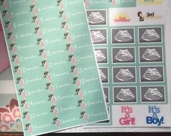Pregnancy tracker Planner Stickers