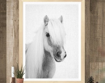 Poney Print, Baby shower gift, Printable Wall Art, baby horse print, Nursery Decor, Black and White Photography, kids room, art prints