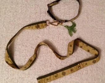 Collare e guinzaglio - collar and leash