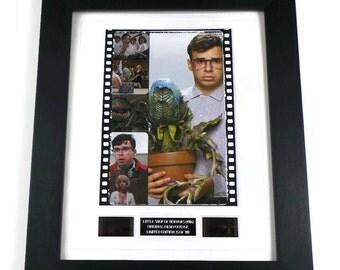 Little Shop of Horrors Film Cells Original Movie Memorabilia in Picture Frame