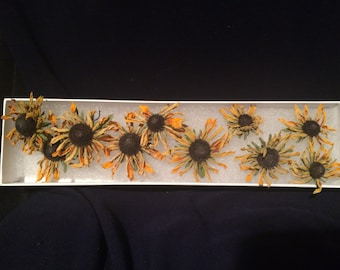 Dried Flowers - Black Eyed Susan - Floral Craft - Botanical - Rudbeckia - Natural Flower