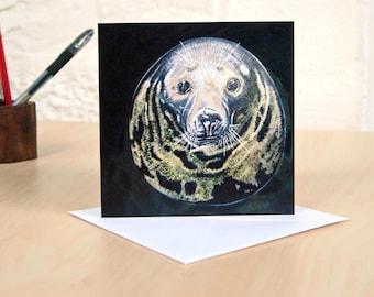 Seal Greeting Card, Seal Birthday Card, Seal Art, Scottish Seal, Seal Gift, Animal Card, Seal Thank You Card, Seal Blank Card, **SALE**
