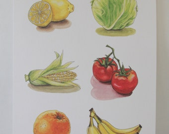 Produce Print Collector's Poster: A Modern Botanical Illustration Poster - 6 Watercolor and Ink Illustrations - 11x17 - Kitchen Art - Fun