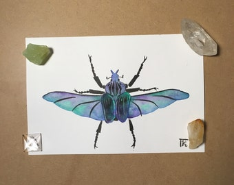 Aurora beetle - original watercolor painting