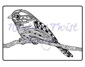 Cute Little Bird A4 Colouring Page, printable PDF digital download, Coloring in page, Adult, Kids