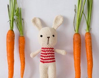 Bunny crochet Amigurumi