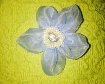 Baby Blue Princess Flower