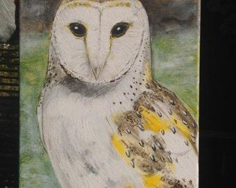 Barn Owl acrylic painting