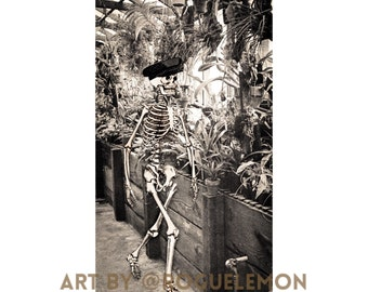 """Vintage Garden Funny Collage Original Art Print 11""""x17"""" signed archival print on fine art paper Made in USA """"Inversion Spring"""""""