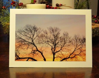 Sunrise Treetop.  Photo Greeting/Note Card.  Blank Inside.