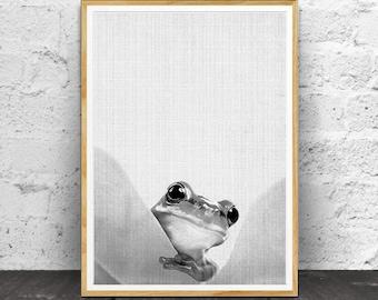Frog Print, Nursery Art Print, Nursery Decor, Nursery Print, Nursery Animal Art,  Animal Print,  Animal Wall Art, Nursery Wall Art, Animal