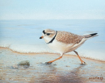 Original Piping Plover Painting, Small Shore Bird on Beach, Running Along the Surf, Casein Painting by Ezartesa