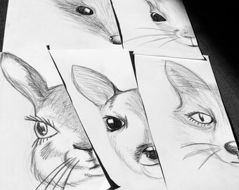 Forest animals - 5 pencil drawings