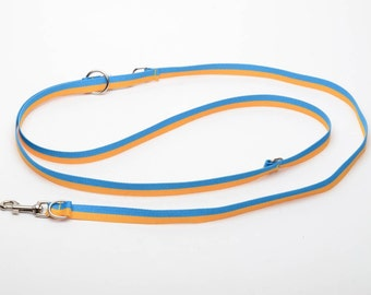 Caprone dog leash