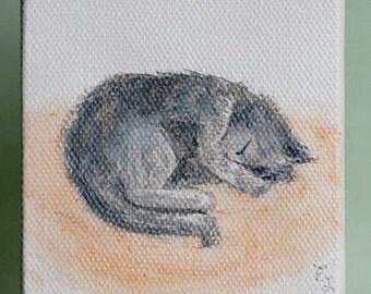 Mini sleeping cat watercolor painting, Gray cat artwork, Small animal watercolor painting, Realistic cat painting, original cat painting