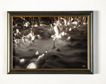 Photo art, wood frame, snow, nature photography, 20 x 30 cm
