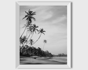 Palm Trees Printable Photography Digital Download Large Art Palm Tree Art Tropical Wall Art Print Instant Home art Wall Decor Beach Prints