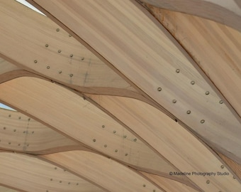 Lincoln Park Pond - Architecture design photography, Chicago, wood structure, detail