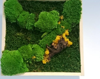 Hand made Moss Picture