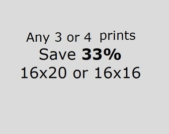 DISCOUNT SET Save 33% On three or four  16x20 or 16x16 Prints of Your Choice