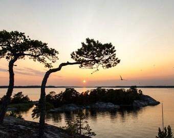 Sunset in the Swedish archipelago
