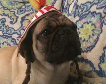 Indian Chief Dog Costume