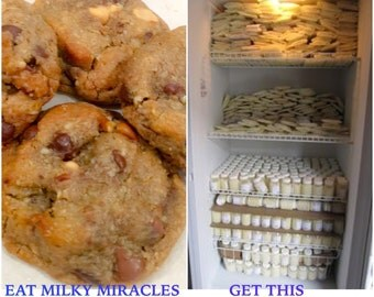 Gluten Free Ultimate MORE MILK Double Chip Lactation Cookies **Double your milk supply now!!!