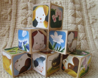 The Poky Little Puppy Picture Book Wooden Blocks