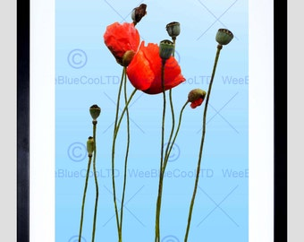 Nature Photo Dt Poppies Against The Blue Sky Art Poster Print FEBMP11731