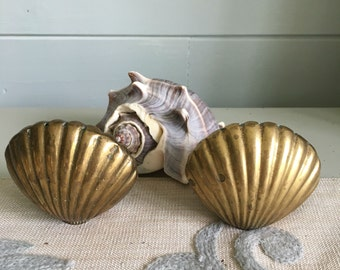 Brass Scallop Shell Salt and Pepper Shakers